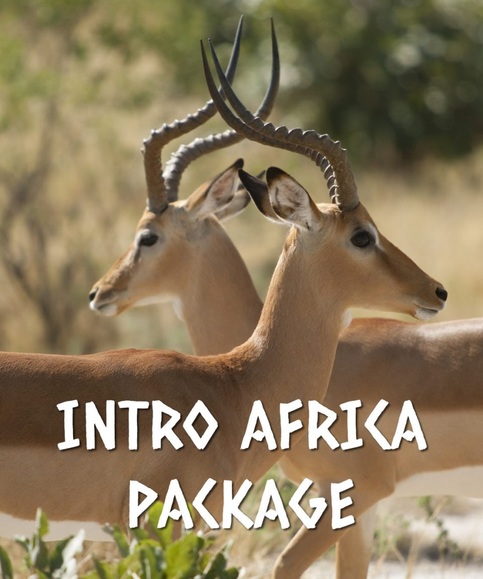 INTRO AFRICA PACKAGE